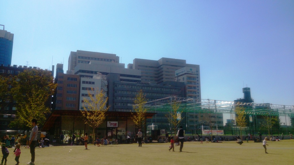芝生広場2