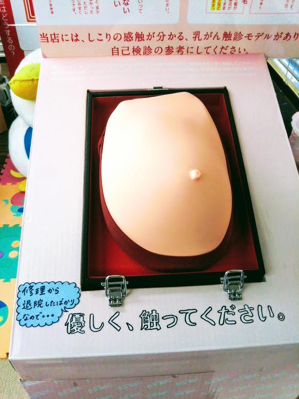 乳がんモデル2
