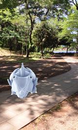 d_石神井公園