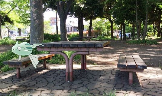 f_石神井公園