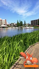 c_石神井公園