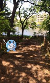 e_石神井公園